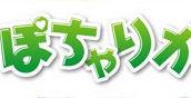 大阪のぽっちゃり専門風俗求人サイト【ぽちゃりか】